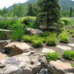 Follow These Tips to Hire the Best Landscaping Company